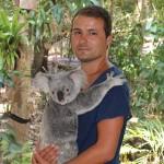 Lone Pine Koala Sanctuary : Roro & koko