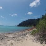WhiteHaven Beach - Départ pour le lookout - 01