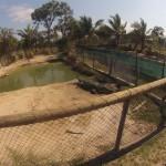 Koorana Farm - 08