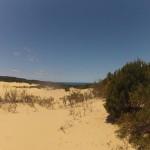 Fraser Island : sandblow - 01