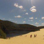 Fraser Island : sandblow - 04