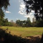 Brisbane : Botanic garden - 01