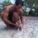 Dingo Beach : Man VS The beast