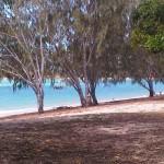 Dingo Beach - 05