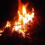 Dingo Beach : Fire