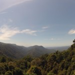 Waterfalls Way - Dorrigo NP - Skywalk - 02