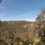 Waterfalls Way - Guy Fawkes River National Park - Lookout - 02