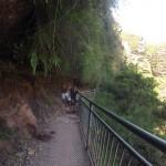 Blue Mountains : Wenworth Falls - 09