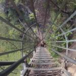 Blue Mountains : Wenworth Falls - 13