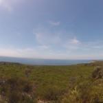 Jervis Bay : Murrays walkway - 01