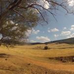 Lost Patrol Camels Farm : Camp 13