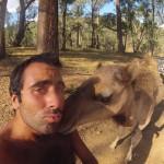 Lost Patrol Camels Farm : Camel 02