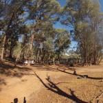 Lost Patrol Camels Farm : Camp 10