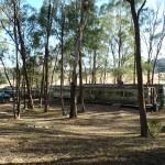 Lost Patrol Camels Farm : Camp 14