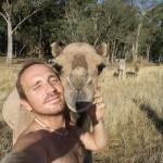 Lost Patrol Camels Farm : Camel 09
