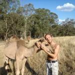 Lost Patrol Camels Farm : Camel 10