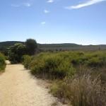 Great Ocean Road - Anglesea