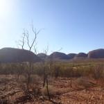Kata Tjuta : Valley of the winds walk - 15