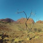 Kata Tjuta : Valley of the winds walk - 16