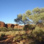 Kings Canyon : Canyon Rim Walk - 04