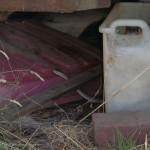 Lost Patrol Camel Farm : Brown Snake