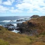 Phillip Island : Point Grant - 01