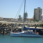 Adelaide - Dolphins : Boat - 01