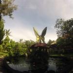 Bali : Butterfly Park - 01