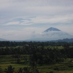 Bali : Jatiluwih - 03