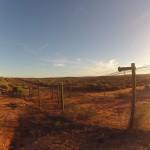 Kalbarri : fence