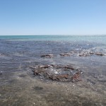 Stromatolites - 01
