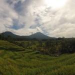 Bali : Jatiluwih - 07