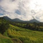 Bali : Jatiluwih - 09